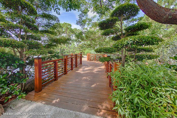 Morikami Museum U0026 Japanese Gardens (Delray Beach, Florida) | Delray Beach    Morikami Museum U0026 Japanese Gardens | Pinterest | Delray Beach Florida,  Japanese ...