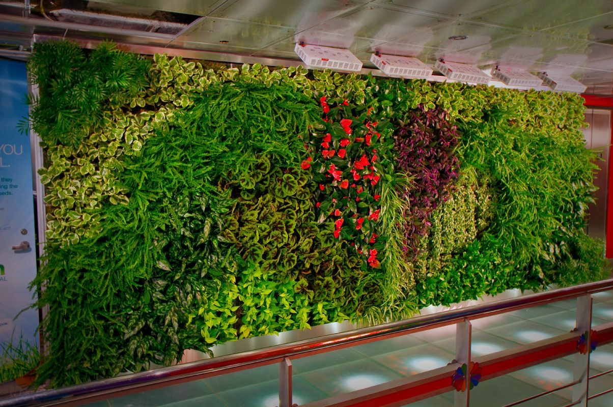 Edible Wall, Bronx, N. / Green Bronx Machine / A Teacher And Students Built  An In Class Farm, And The Kids Academic Performance Soared. Green Living ...