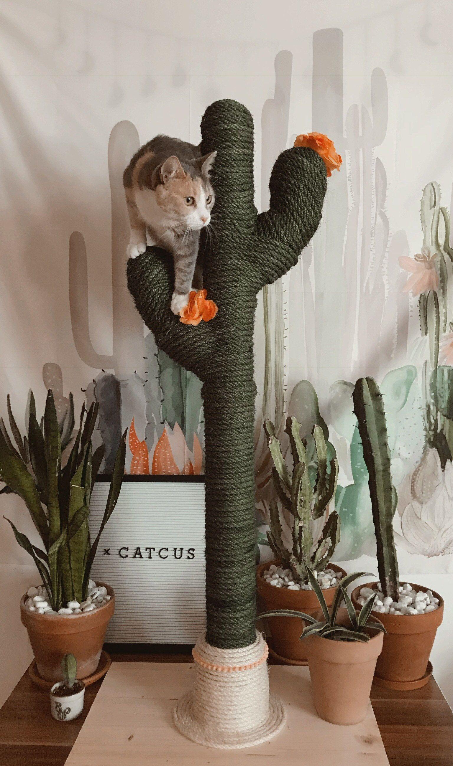 Cactus For Cats Catcus Scratching Post Cat Tree Boho Cat Tower Cat Tree Designs Diy Cat Tree Cat Scratching Post