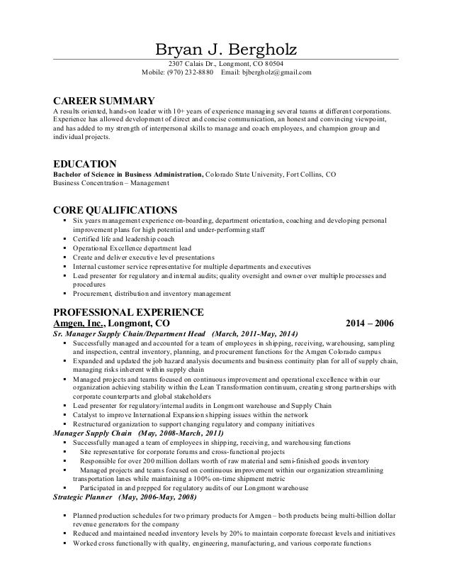 bryan bergholz calais longmont mobile sample skills based resume - Career Summary On Resume
