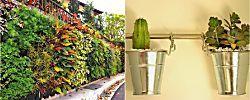 8 tipos de jardín vertical para hacer en casa y cómo conseguirlo fácilmente