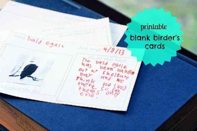 Printable Blank Birder's Cards