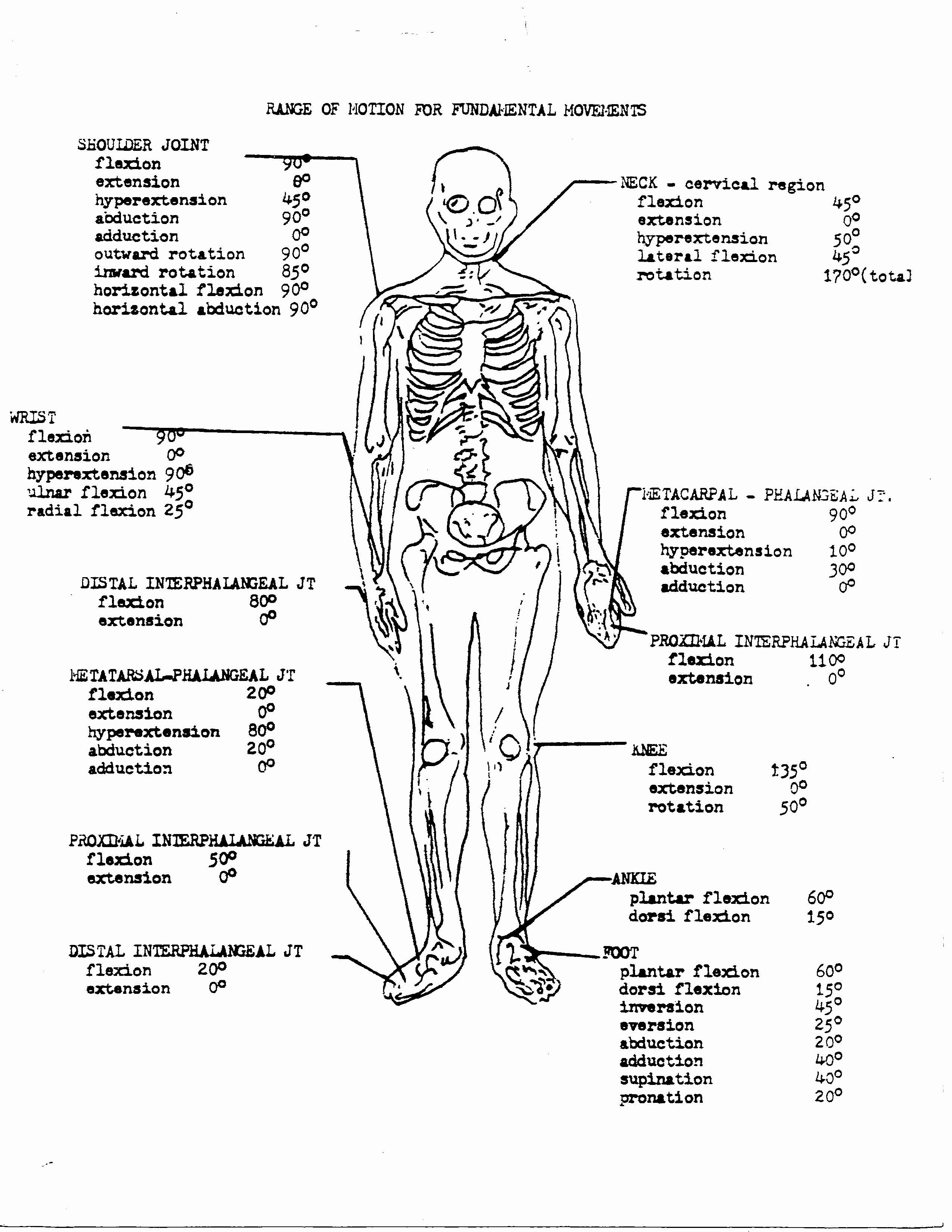 Anatomy Coloring Pages for Kindergarten Awesome Free ...