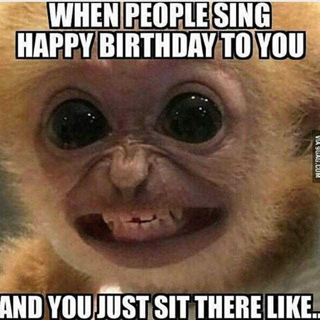 Funny Birthday Memes Home: Funny Ppl, Places & Things