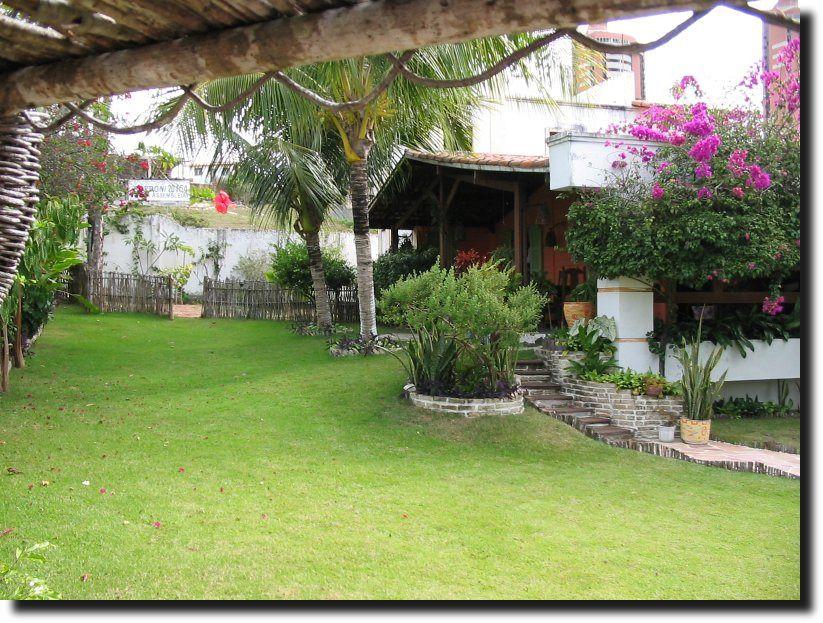 Como fazer um jardim barato no quintal teste Como fazer um jardim, Jardim lindo e Decoraç u00e3o