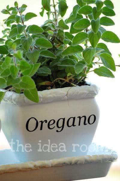 Organic Indoor Herb Garden Indoor herb garden herbs garden herbs and indoor herbs indoor herb garden the idea room workwithnaturefo