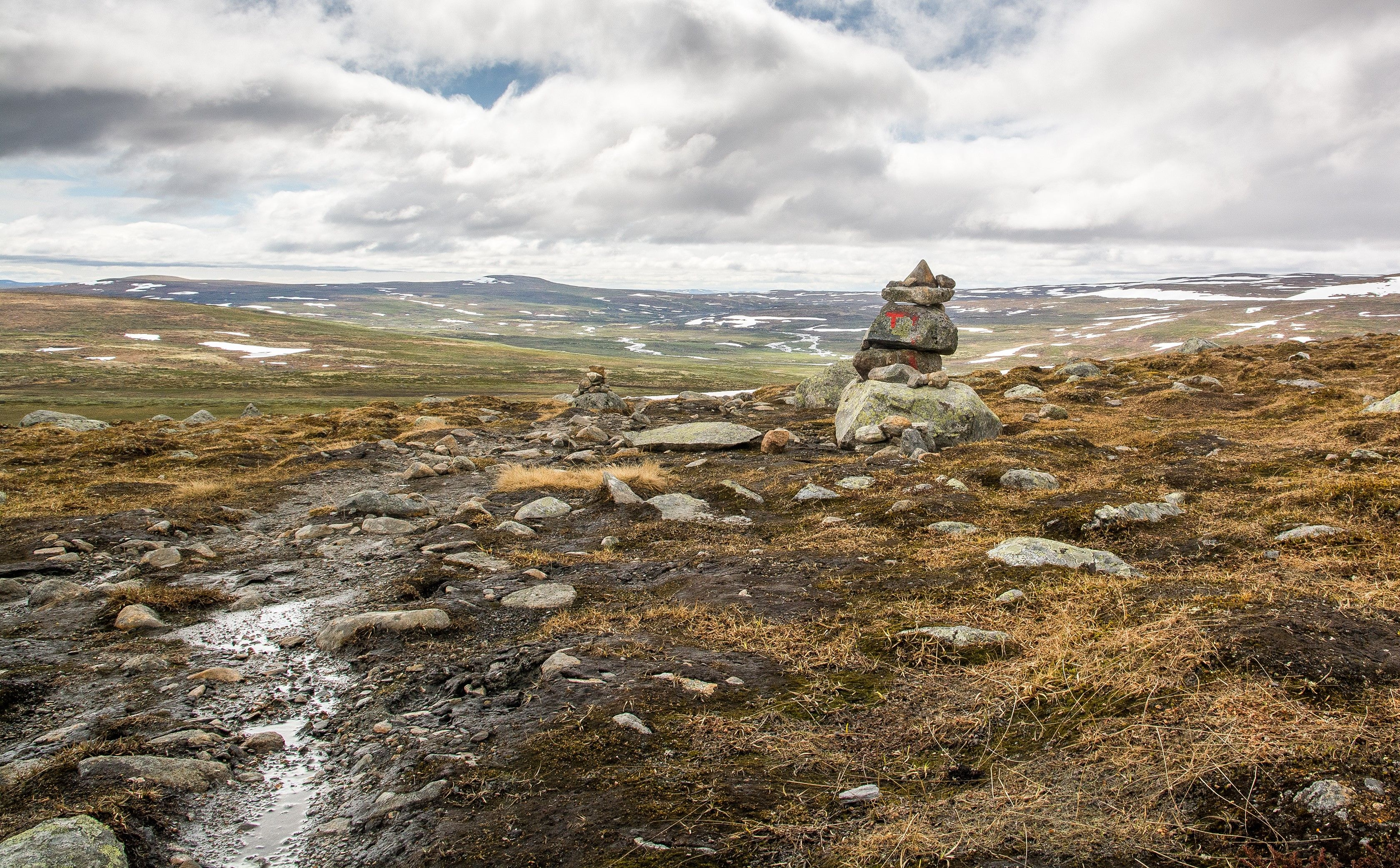 Hardangervidda southern Norway (during Summer) [OC] [3359x2082px]
