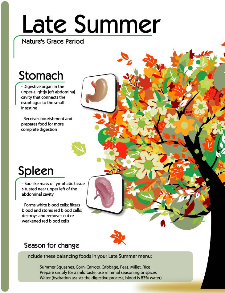 Nature's Grace Period. Learn more about Late Summer