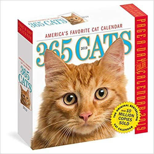 Amazon Com 365 Cats Page A Day Calendar 2019 9781523503339