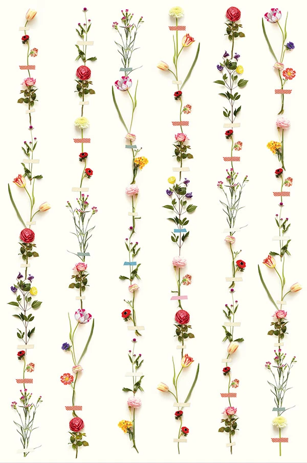 Flower Garland Wall Mural by Eijffinger for Brewster Home Fashions