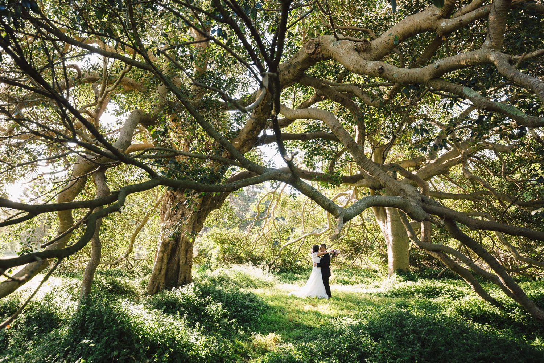 Photographer: Jack Chauvel - Fuji Astia 100F - www.jackchauvel.com