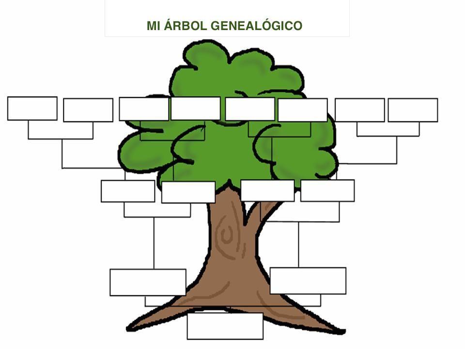 Rbol Genealgico Spanish Class Projects Pinterest Class