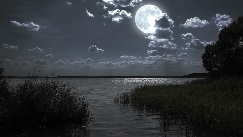 Full Moon Night Landscapes 30 Full Moon Night Landscape With Forest Lake 4k 00 30 Full Moon Night Night Landscape Full Moon Night Moonlight Painting
