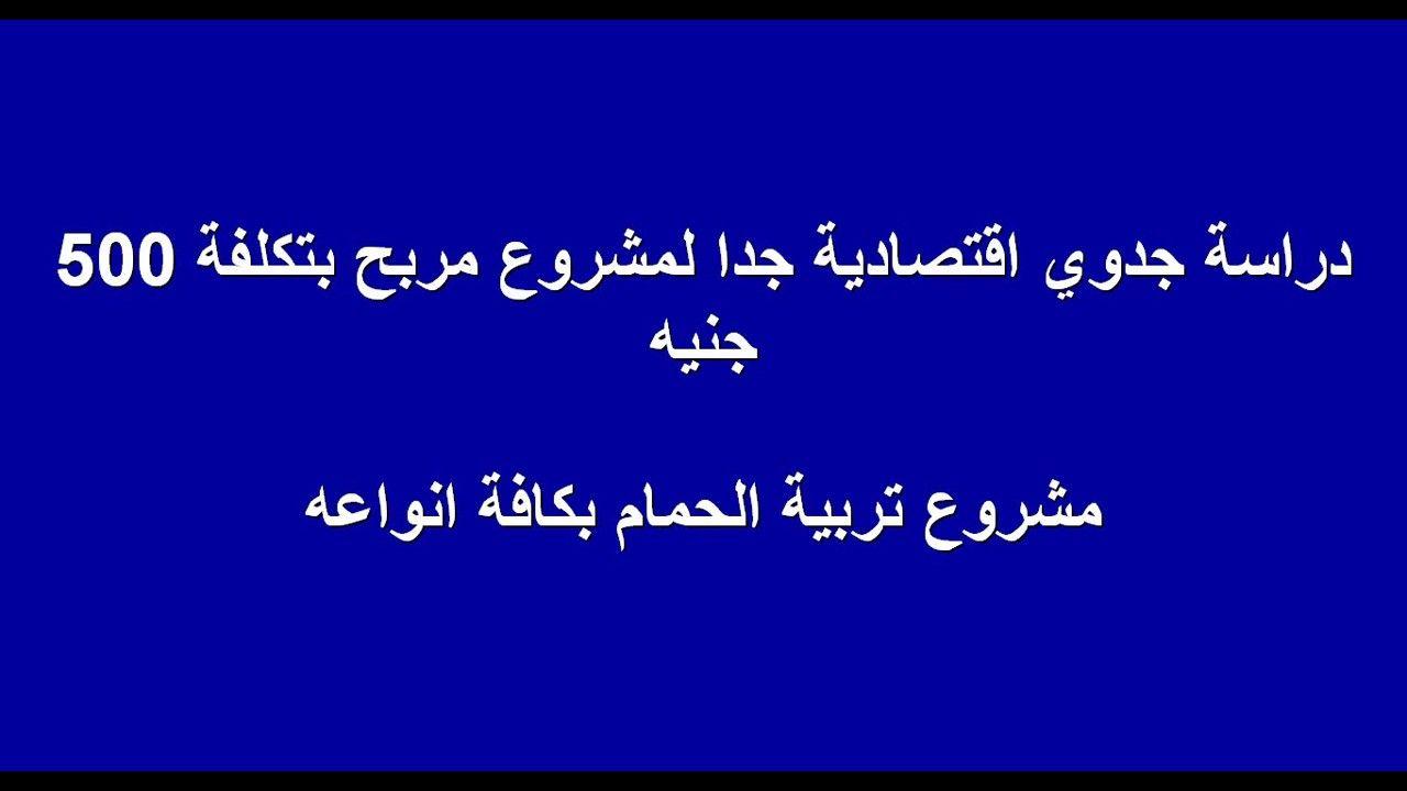 لأول مره كافة أسرار مشروع تربية الحمام بجميع انواعه وجني ارباح هائلة Calligraphy Arabic Calligraphy