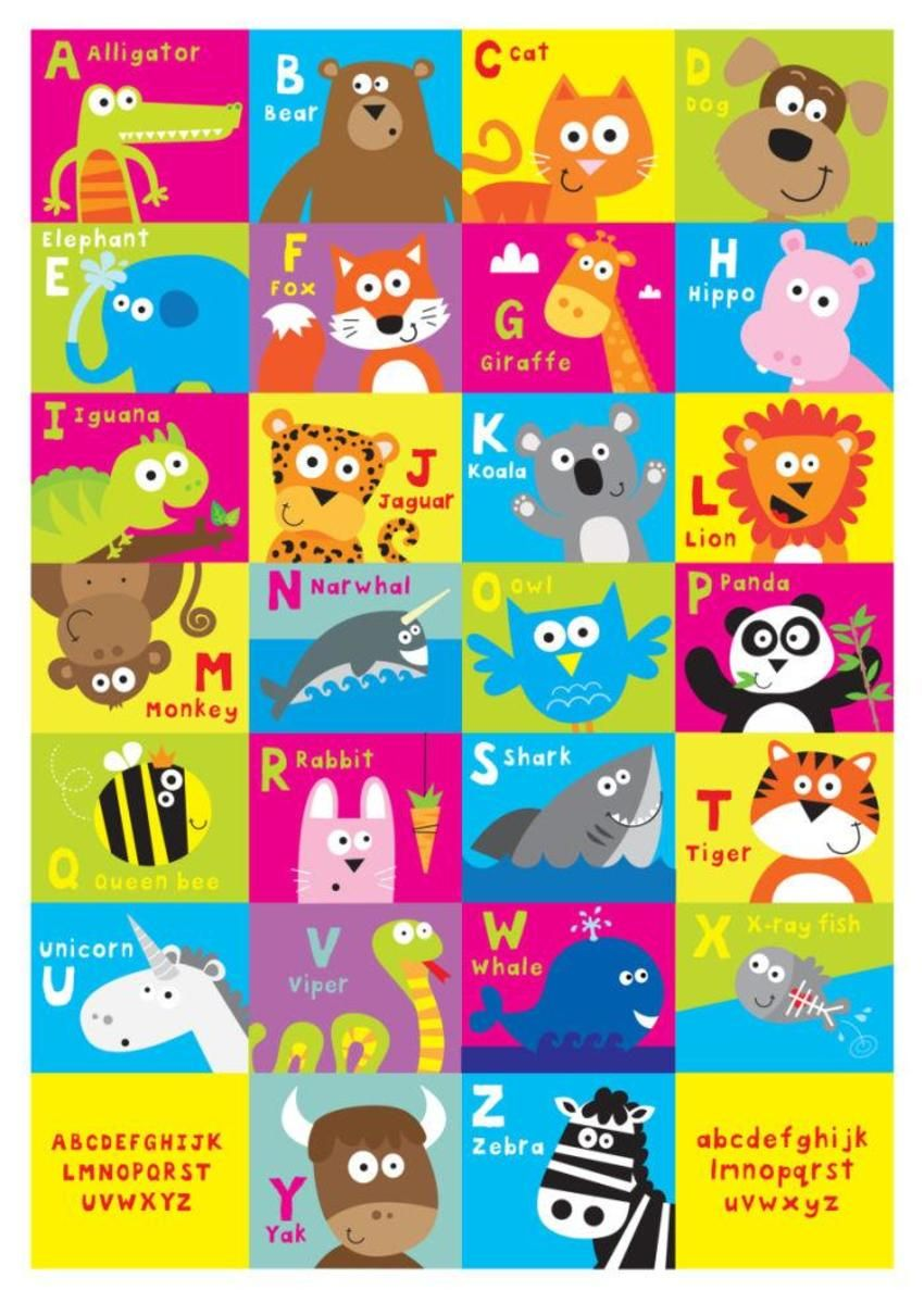 Animal Alphabet Jpg Animal Alphabet Alphabet Art