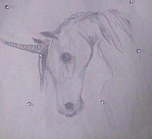 Unicorn drawing black n white