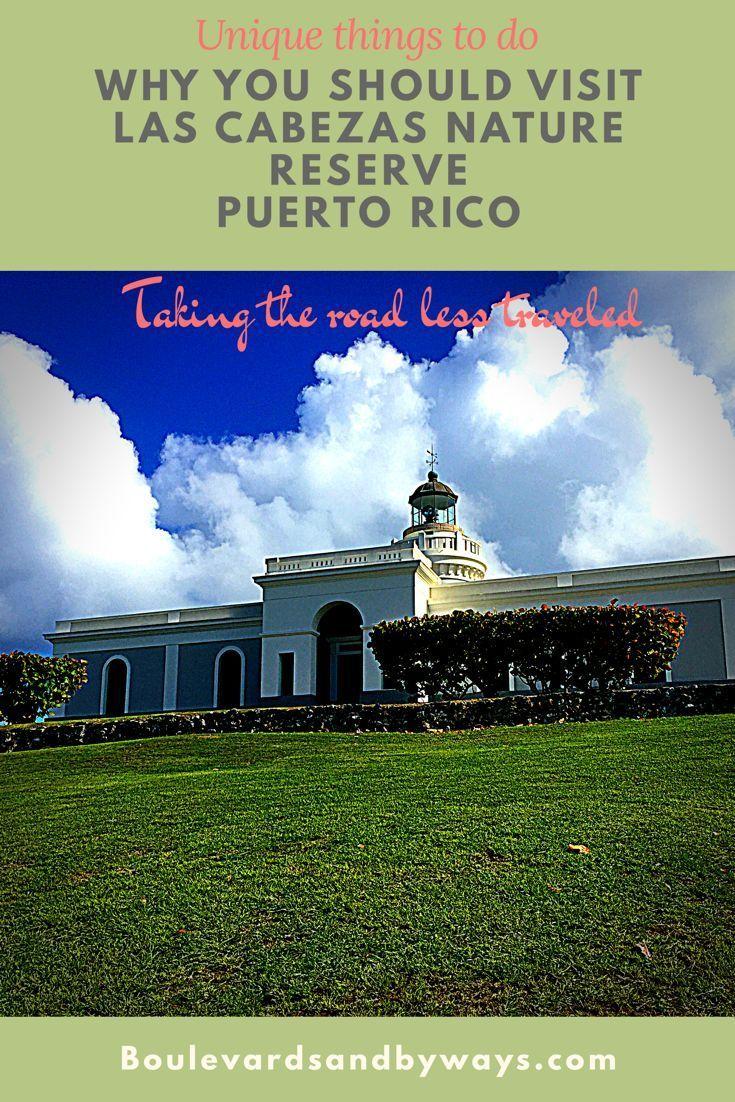 Why You Should Visit Las Cabezas Nature Reserve in Puerto