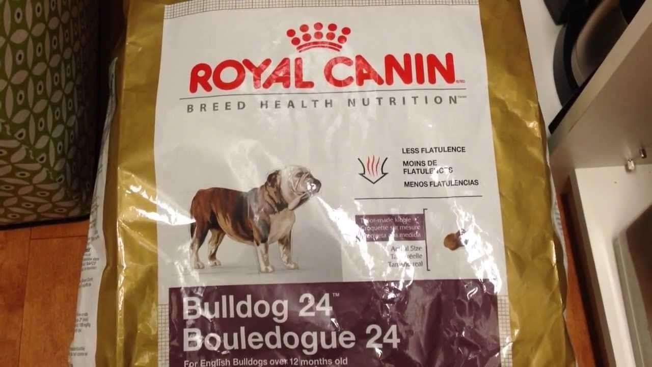 Best Dog Food For English Bulldog English Bulldog Puppy Puppy Food Bulldog