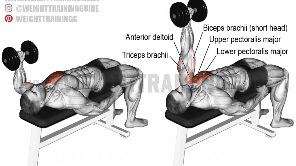 Dumbbell One Arm Overhead Press Instructions And Video