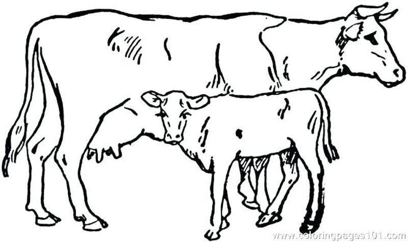 Cute Cow Coloring Pages Ideas Free Coloring Sheets Cow Coloring Pages Cow Calf Animal Coloring Pages