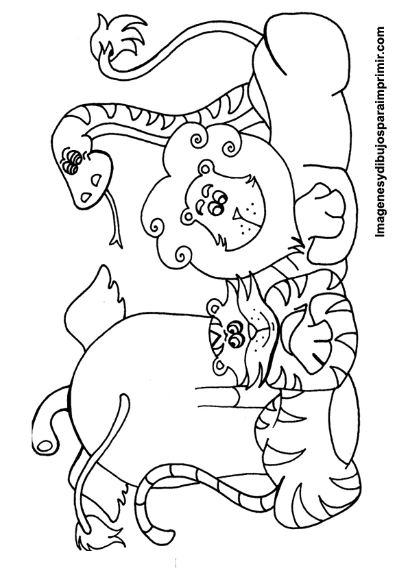 Colorear animales   ANIMALES DE LA SELVA   Pinterest