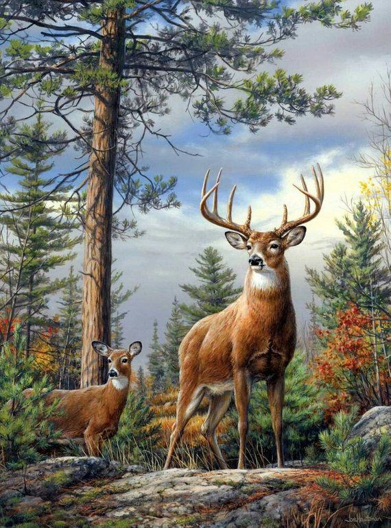 Needlepoint Canvas 14 Or 18 Count Deer Hunting Wild Life Animals In 2021 Deer Painting Wildlife Paintings Wildlife Art