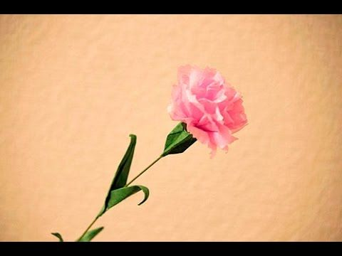 Origami carnation youtube paper flowers origami carnation youtube mightylinksfo Images