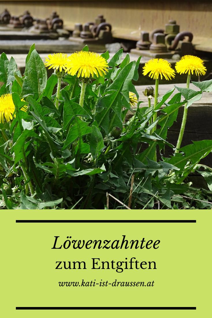 Lowenzahntee Zur Entgiftung Garten Pflanzen Gemuseanbau Pflanzen