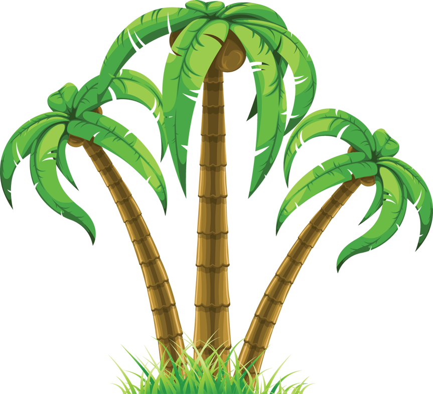 group of three palm trees png 863 786 artistic elements clip rh pinterest com au palm trees vector free download vector palm tree clip art