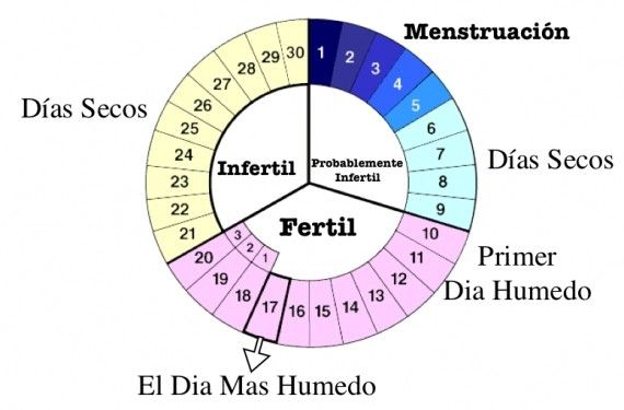 Cuales son mis dias fertiles Fuete: http://i0.wp.com/cualesson.org ...