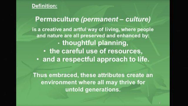 Permaculture school -lecture 1