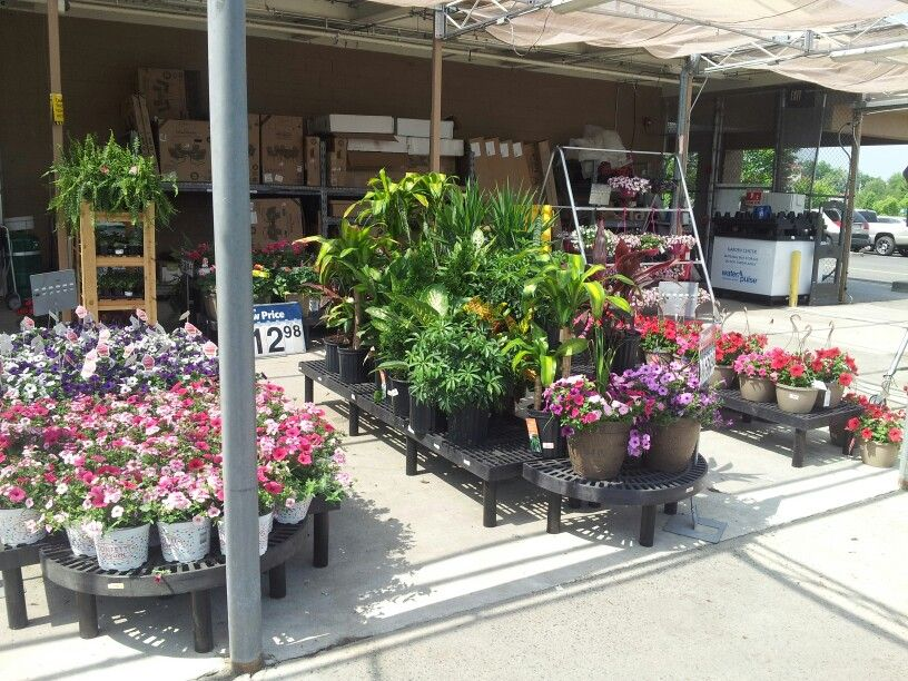 Hadly Mass Walmart Display With Images Garden Center Displays