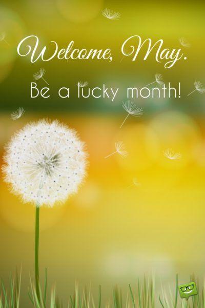 Hello, May May quotes, May month quotes, Hello may quotes