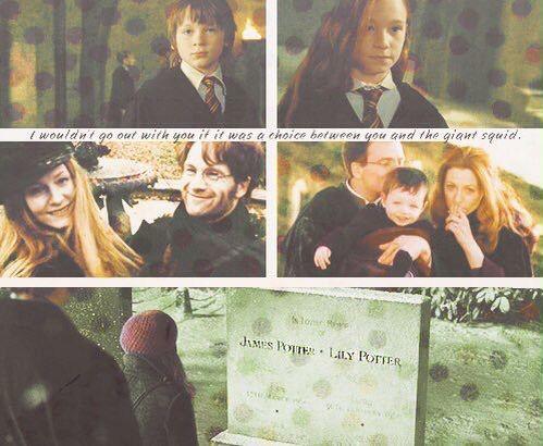 Lily & James Potter ❤️