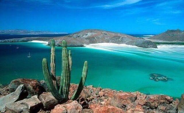 Bahía De Todos Los Santos Bc México Playas Mexicanas Playa Balandra Viajes En Mexico