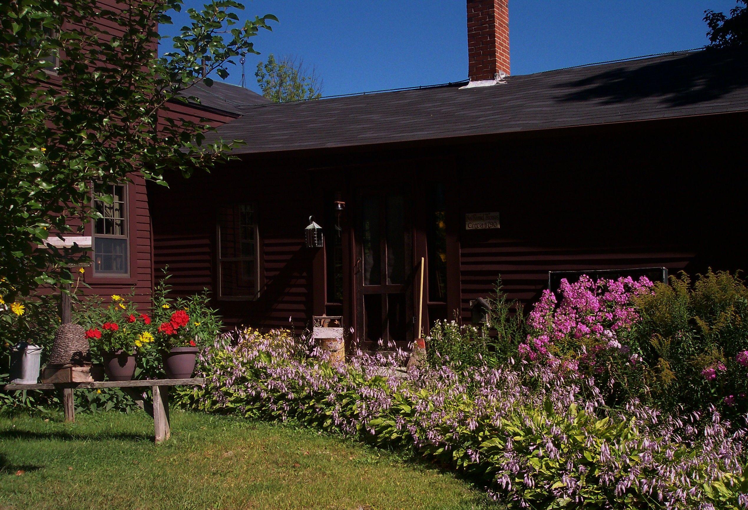 Side entrance | Home pictures, Garden, Entrance