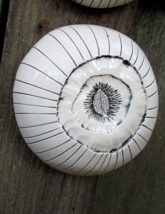 Denise Krueger/dkruegerbotanicart - Ceramic Black and Cream White Barnacle Wall Art