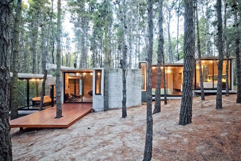 Modern House In Woods Concrete Houses