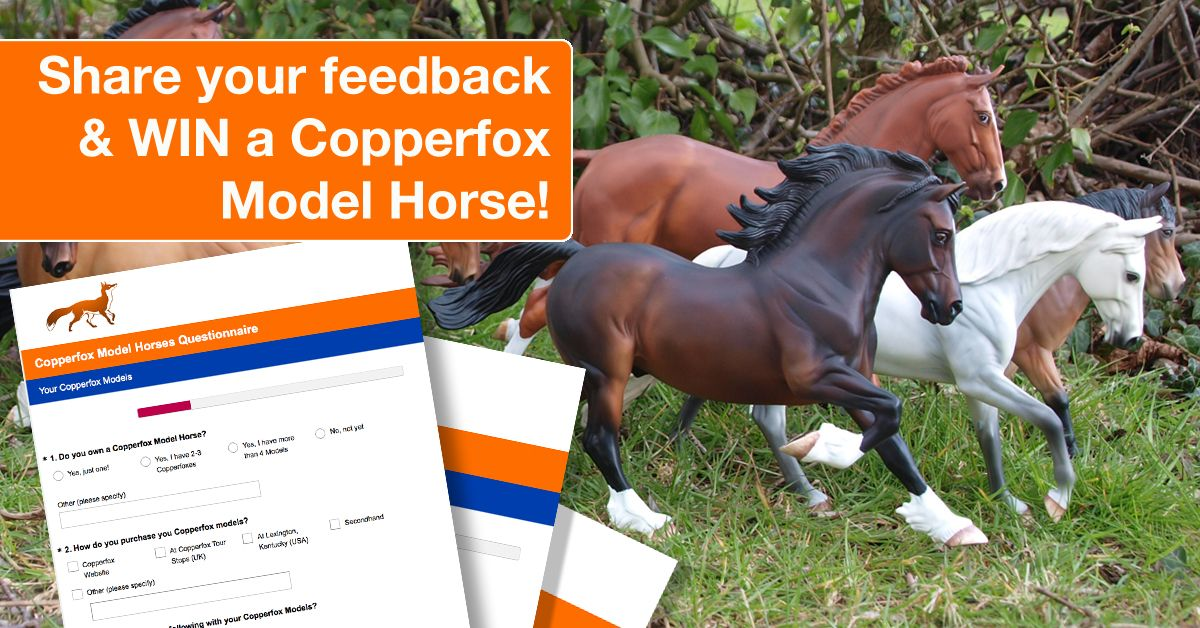 Copperfox Survey & Questionnaire: We need your feedback