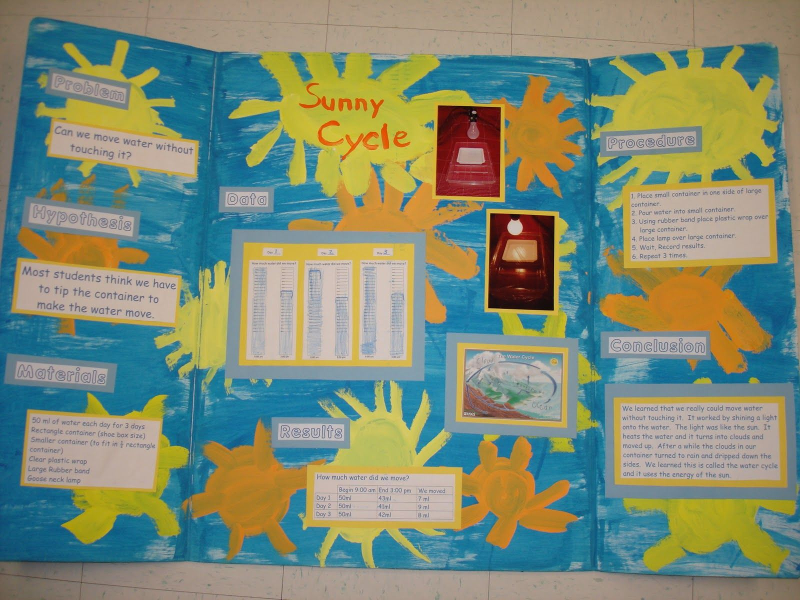 science fair project poster