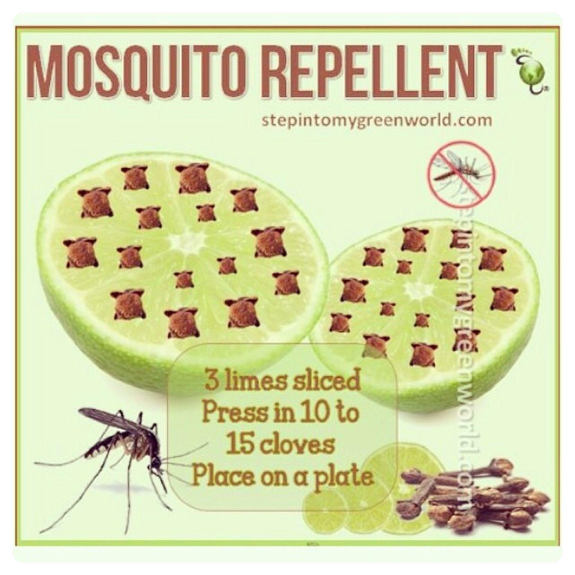 Homemade mosquito repellant Naturally Healthy Diy