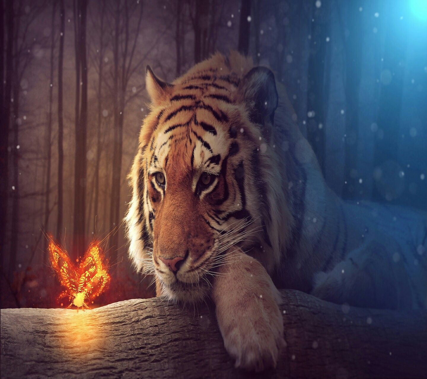 Pin by savannah martinez 01 on tiger art pinterest tiger art big tiger tiger art tiger wallpaper mobile wallpaper wallpapers tigers group digital art free altavistaventures Choice Image