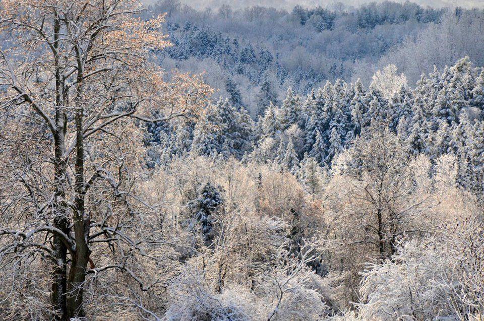 I love winter in Vermont!