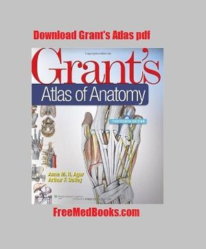 Want to learn human gross anatomy? Download this grant's atlas of
