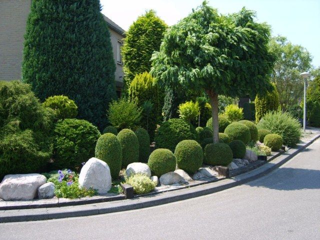 gartengestaltung mit buchs kreative gartengestaltung buchsbaum bäume steine | garten