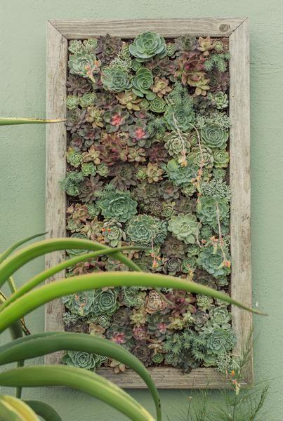 Diy Vertical Wall Panels Vertical Vegetable Gardens Succulents Garden Vertical Garden