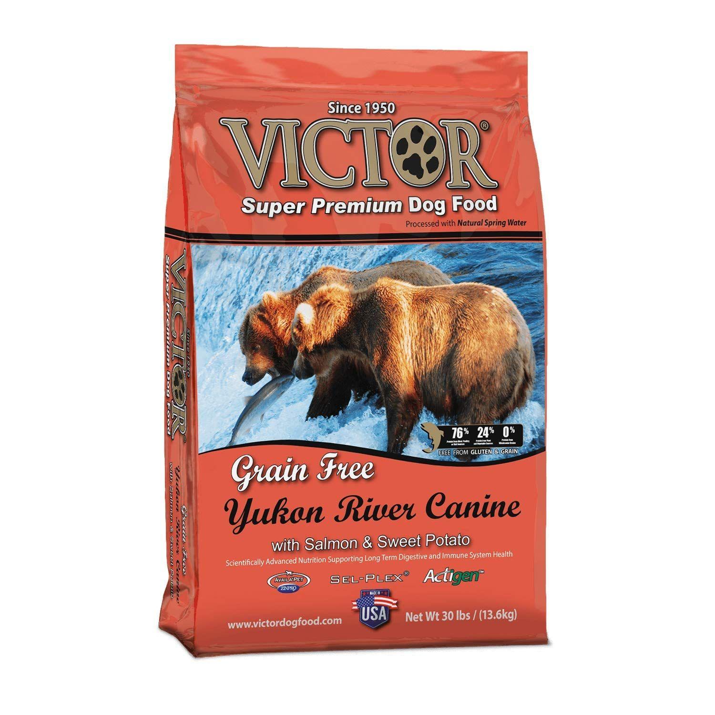 Victor Dog Food Grain Free Yukon River Canine Salmon And Sweet