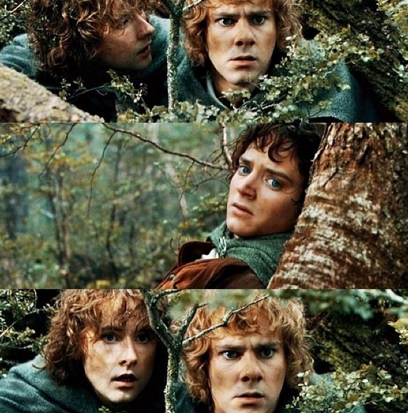 Merry & Pippin; The Fellowship of the Ring