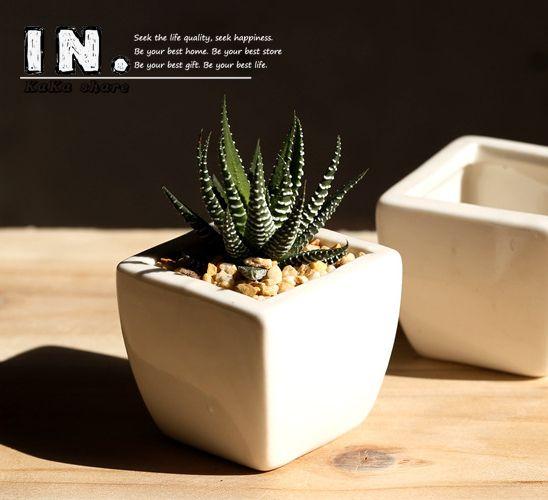 Genial Nouvelle Maison Micro Jardin Décoration Mini Pots Carré Juicy Plantes Vase  Pots De Fleurs Contenant Petit