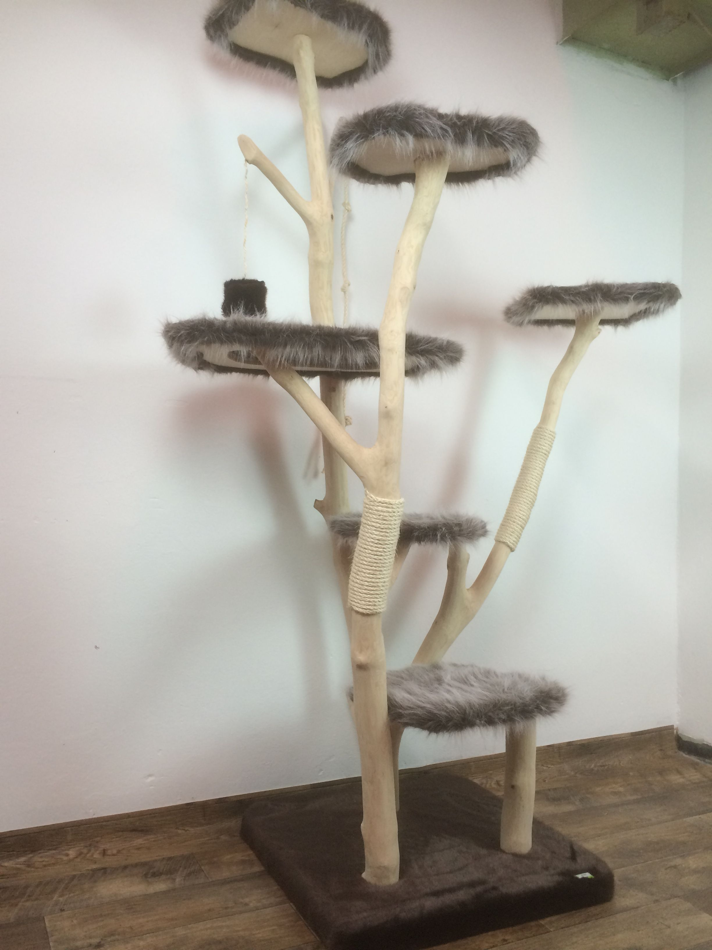 naturkratzbaum maine coon | naturkratzbaum joli-design | pinterest